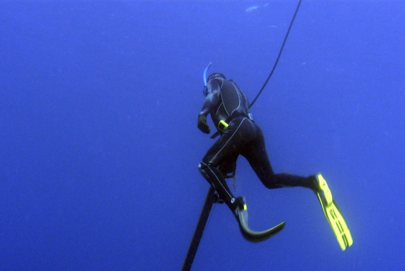 How to start spearfishing